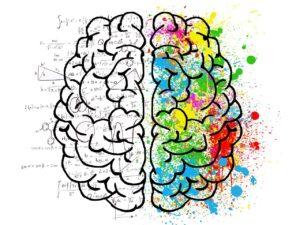 Corso neuromarketing, cme funziona l'attenzione nel cervello